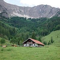 5VOR12 - TV Serie | Der Alpenknast | Drehbuch:Marcus Roth & Tillmann Roth | Regie: Niklas Weise & Christof Pils | TV60 Filmproduktion